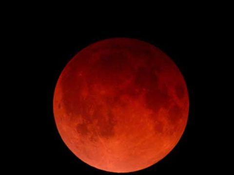 月全食-2010-12-21.jpg