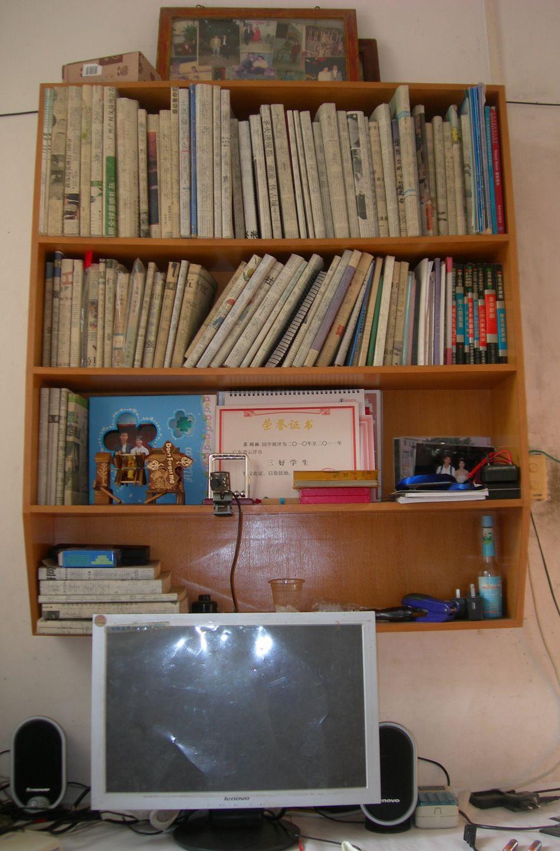 晒书前的书架