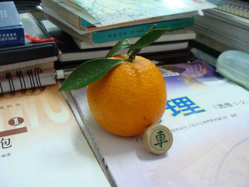 """11-吹水的橙和""""车"""".jpg"""